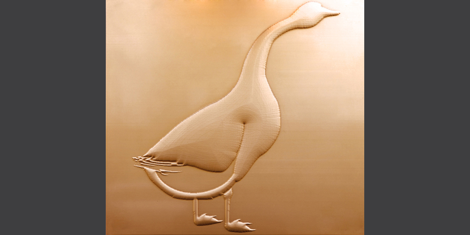 Mortara, panel with embossed goose in Mortara © Alberto Jona Falco